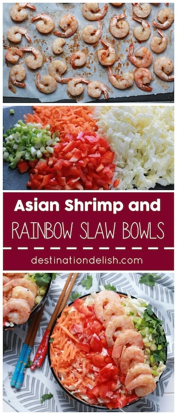 Asian Shrimp and Rainbow Slaw Bowls