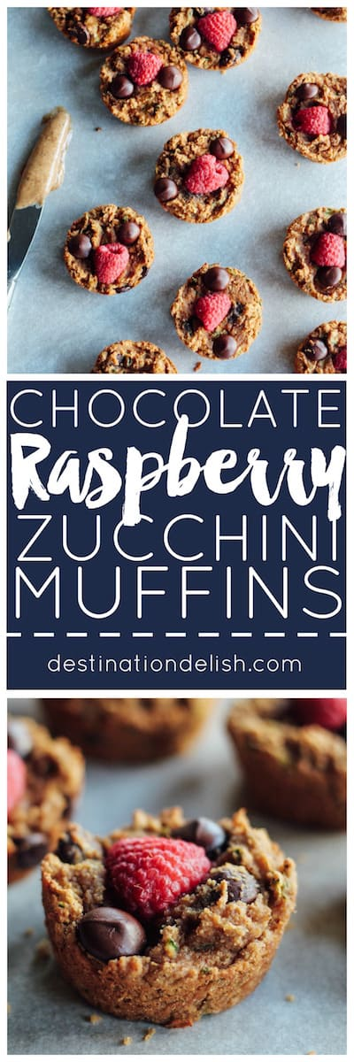 Chocolate Raspberry Zucchini Muffins | Destination Delish - soft and gooey muffins topped with chocolate and raspberries. Made luscious with almond butter and coconut flour. gluten-free, grain-free, dairy-free, and egg free
