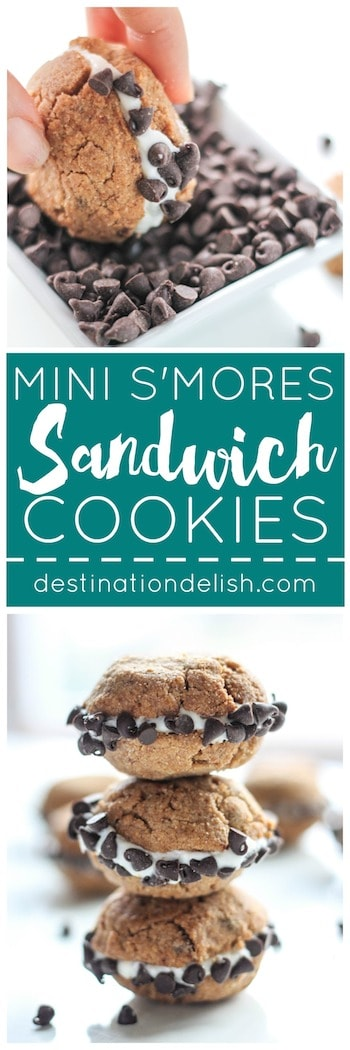Mini S'mores Sandwich Cookies | Destination Delish
